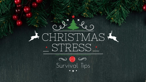 Survival tips for Christmas Stress Early Childhood Education